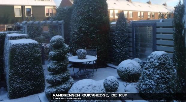 2012-12-20-aanbrengen-quickhedge-01