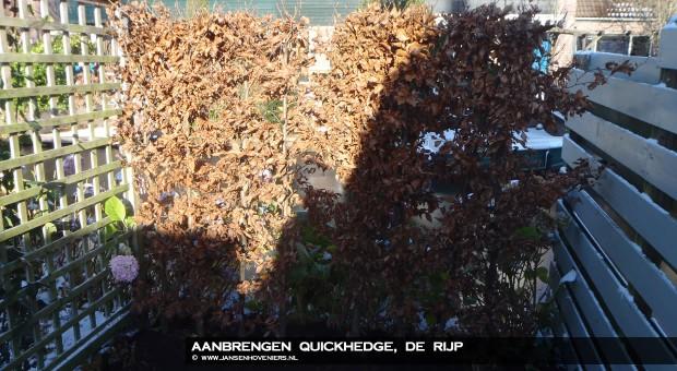 2012-12-20-aanbrengen-quickhedge-07