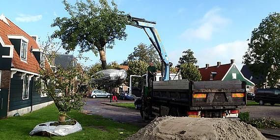 http://www.jansenhoveniers.nl/wp-content/uploads/2013/01/header-boomverzorging-570-285-03.jpg
