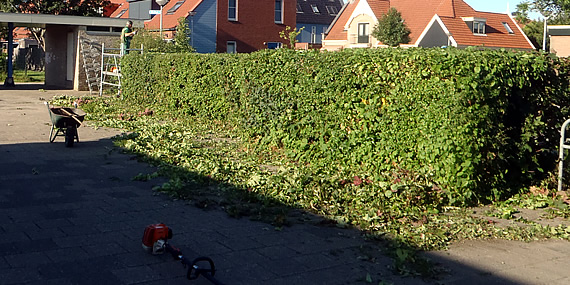 http://www.jansenhoveniers.nl/wp-content/uploads/2013/01/header-tuinonderhoud-570-285-01.jpg