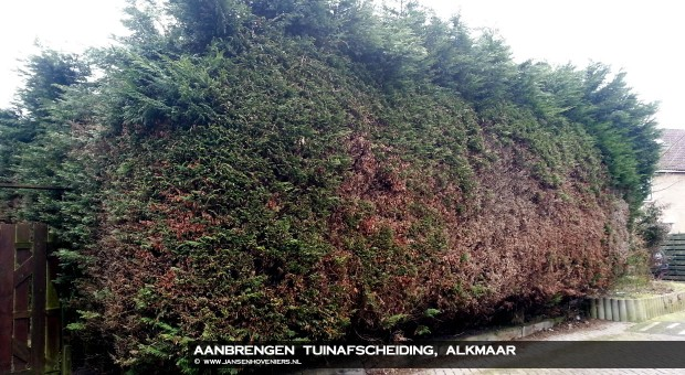 2013-07-02-tuinafscheidingalkmaar01