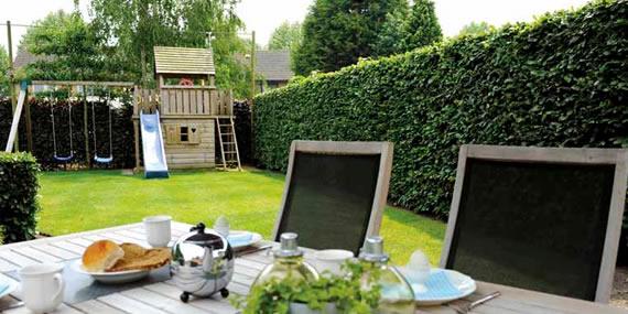 http://www.jansenhoveniers.nl/wp-content/uploads/2014/05/header-quickhedge-570-285-03.jpg