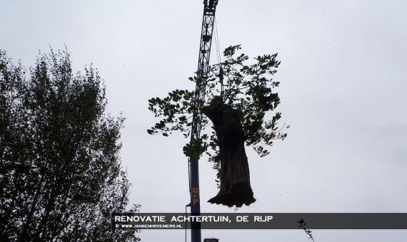2013-10-25-renovatietuinderijp05