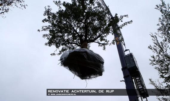 2013-10-25-renovatietuinderijp09